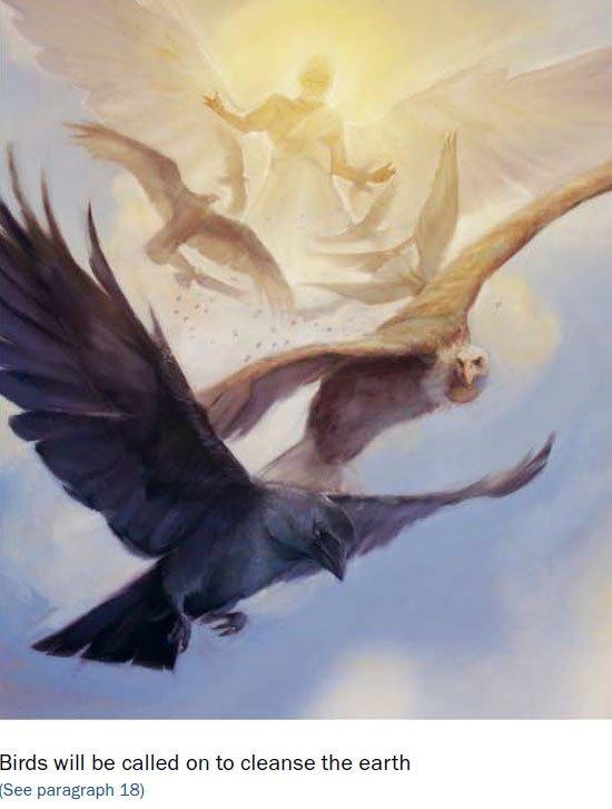 birds-of-armageddon